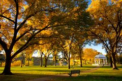 Fall colors in the park Stock Photos