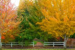 Fall Colors at Park Entrance in Suburban Neighborhood Stock Photos