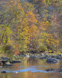 Fall Colors, Patapsco River, Rapids Trail, McKeldin Recreation Area, Patapsco Valley State Park, MD Royalty Free Stock Photography