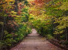 Fall Colors of Prince Edward Island. Fall colors on Prince Edward Island, Canada stock photo
