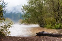 Autumn Rains along the Sandy River. Fall colors, rain and fog at the confluence of the Sandy and Bull Run rivers in Oregon. Bull Run is the primary source of royalty free stock photography