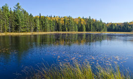 Fall Colors Reflected on a Lake Royalty Free Stock Images