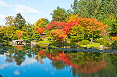 Fall Colors Reflected in Pond. Landscape of colorful autumn trees reflected in pond. Blue water and sky with white clouds Stock Photos