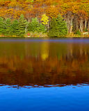 Fall colors reflected in still pond Royalty Free Stock Images