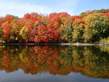 Fall Colors Reflecting on Mississippi Stock Photography