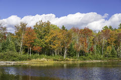Fall Colors Reflecting off a Lake in Autumn - Ontario, Canada Stock Image