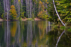 Fall colors and reflexions Royalty Free Stock Photo