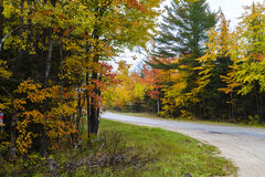 Fall colors on a road in Michigan Stock Photos