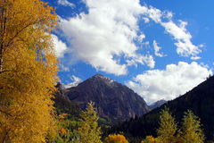 Fall colors in the San Juan Mountains Royalty Free Stock Images