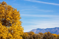 Fall Colors and the Sandia Mountains Stock Image