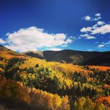 Fall Colors. Fall in the Sangre De Cristos Royalty Free Stock Image