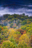 Fall Colors in the Smokies Royalty Free Stock Images