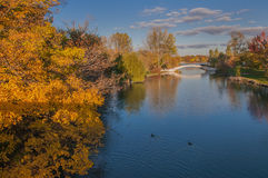 Fall Colors South Detroit River Royalty Free Stock Photos