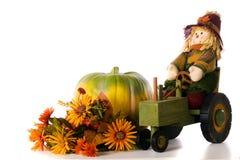 Fall Colors Still-Life Stock Photos