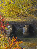 Fall Colors, stream and culverts Stock Photo