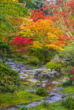 Fall Colors and Stream. Vertical image of autumn colors and rocky meandering stream with small waterfall stock photo