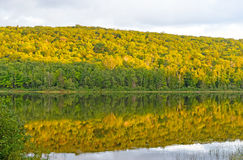 Fall Colors at Sunset on a Wilderness Lake Royalty Free Stock Photography