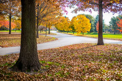 Fall colors surround roadway. In Dyer, Indiana Royalty Free Stock Photography