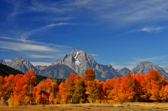 Fall colors surround a rock cliff in The Grand Tetons. Stock Photography