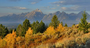 Fall Colors, The Tetons Stock Photography