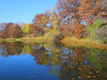 Fall colors on Thomas Lake, MN Royalty Free Stock Photography
