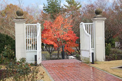 Fall colors thru a gate Stock Images