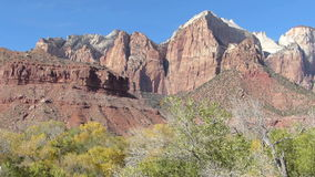 Fall Colors in the Tree at Zion National Park Utah Panning Shot stock video footage