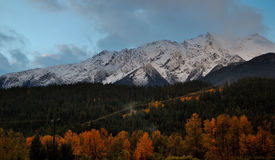 Fall colors under Mt Currie Stock Image
