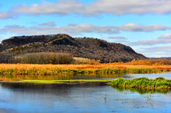 Fall Colors in Upper Mississippi Refuge Marsh Area - New Albin, Iowa Royalty Free Stock Photo