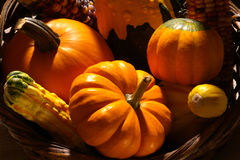 Fall Colors Vegetables royalty free stock photography