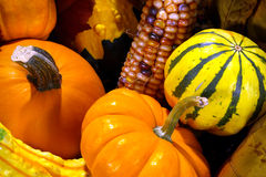 Fall Colors Vegetables Stock Photo