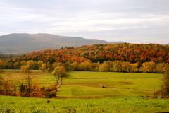 Fall Colors in Vermont Royalty Free Stock Photo