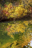 Fall Colors Water Reflection Wenatchee River Washington Royalty Free Stock Photos