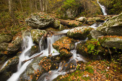Fall colors, waterfall cascade, skyline drive Stock Images