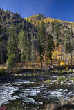 Fall Colors Wenatchee River Royalty Free Stock Images