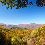 Fall colors woods in the Smoky Mountains National Park Stock Photography