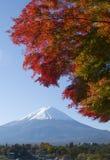 Fall Colors X Stock Photos