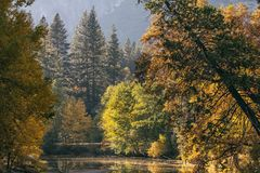Fall colors in Yosemite Valley in Yosemite National Park in Cali. Fornia, United States stock photography