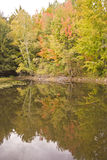 Fall colour reflection on water Stock Photography