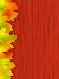 Fall coloured leaves. EPS 8 file included. Fall coloured leaves making a border on a wooden background, Fall Leaves. EPS 8 file included royalty free illustration