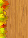 Fall coloured leaves & wooden background. EPS 8 Stock Photography