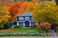 Fall Colours behind a house. Colourful fall colours behind a house with windows royalty free stock images