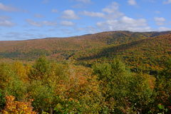 Fall Colours on Cape Breton Island Stock Images