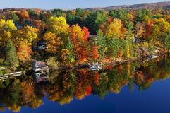 Fall colours along the lake Royalty Free Stock Photos