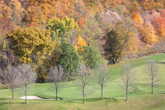 Fall Colours at the Green. Fall colours at the Glen Abby golf course in Oakville, Ontario in Canada Royalty Free Stock Image