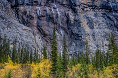 Weeping wall, Banff National Park, Alberta, Canada. Fall colours highlight the weeping wall in banff national park Royalty Free Stock Image