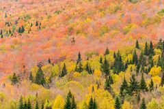 Fall colours from Mount Megantic royalty free stock photography