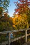 Fall Colours Stock Image