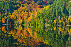 Fall Colours Reflected in Lake Stock Photo