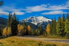 Fall colours and a Rocky view. In Sheep river Provincial Park Stock Photography